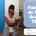 Pañales de tela: Grovia TE2 – Cloth diapers: Grovia AI2